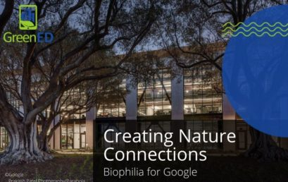 Creating Nature Connections: Biophilia for Google